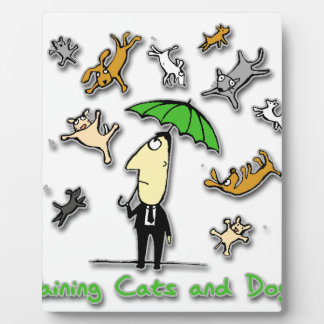 It s Raining Cats and Dogs Photo Plaque