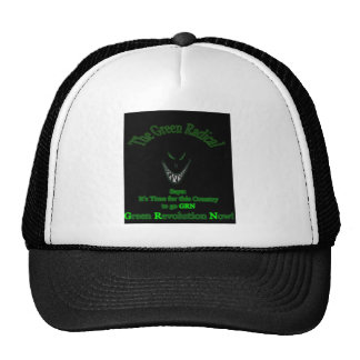 it s Time for Renewable Energy Hat