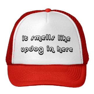It Smells Like Updog In Here Hats