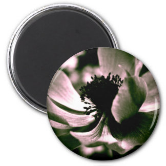 It was a beautiful day... Anemone 2 Inch Round Magnet
