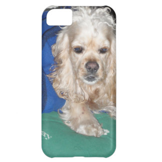 It was a hard night iPhone 5C case