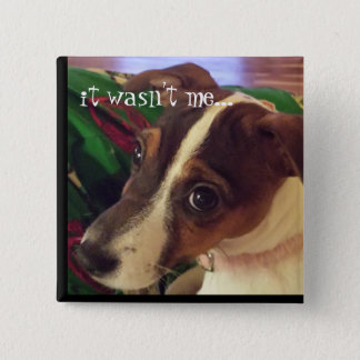 """""""It wasn't me"""" Dog Button"""