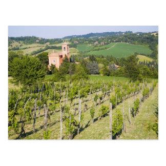 Italia, Bolonia, visión a través del viñedo a Chie Postal