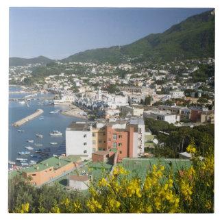 ITALIA, Campania, (bahía de Nápoles), ISQUIONES, L Azulejo Cuadrado Grande