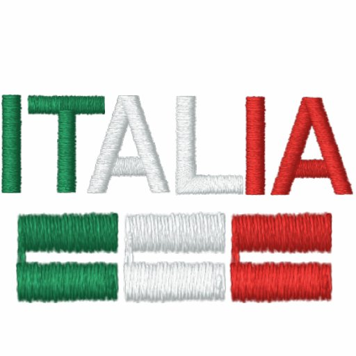 Italia-Flag of Italy Embroidered Hoody