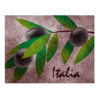 Italia Olives Post Cards