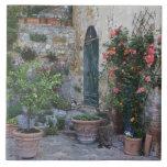 Italia, Petroio. Las plantas Potted adornan un pat Azulejos Cerámicos