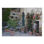 Italia, Petroio. Las plantas Potted adornan un pat Felicitación