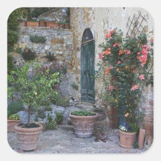 Italia, Petroio. Las plantas Potted adornan un Pegatina Cuadrada