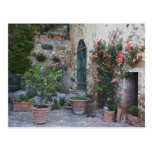 Italia, Petroio. Las plantas Potted adornan un Postal