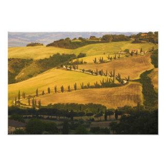Italia, Toscana, camino del zigzag en Toscana Cojinete