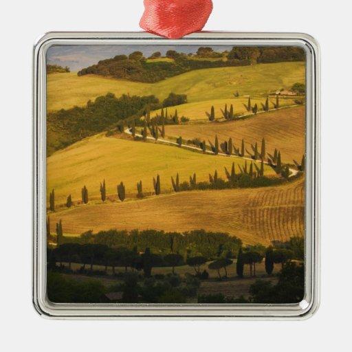 Italia, Toscana, camino del zigzag en Toscana Ornamente De Reyes