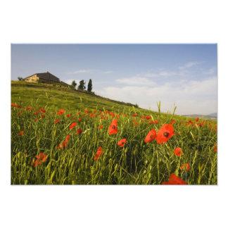 Italia, Toscana, chalet toscano en primavera con Fotografía