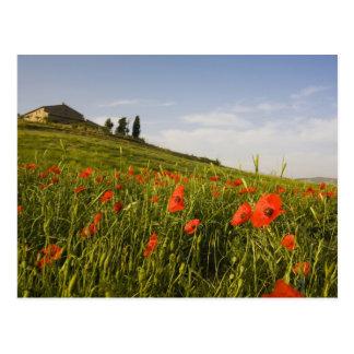 Italia, Toscana, chalet toscano en primavera con Postales