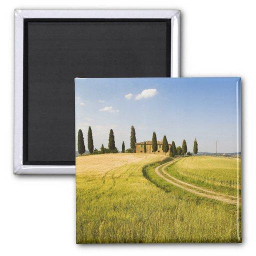Italia, Toscana, chalet toscano que acerca a la co Imanes De Nevera