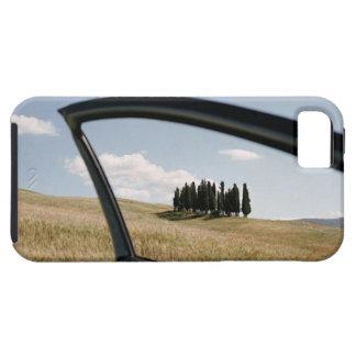 Italia, Toscana, d'Orcia de Val, árboles de iPhone 5 Funda