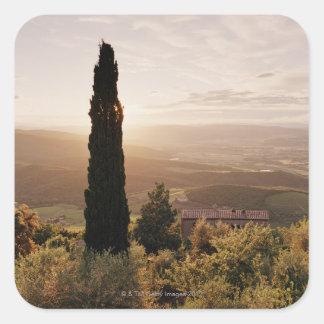 Italia, Toscana, d'Orcia de Val, Montalcino Pegatinas Cuadradases