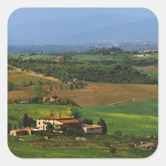 Italia, Toscana. Escénico del d'Orcia de Val Pegatina Cuadrada