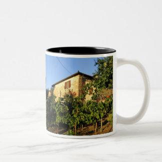 Italia, Toscana, Huelga. Escenas del vino del Taza De Café De Dos Colores