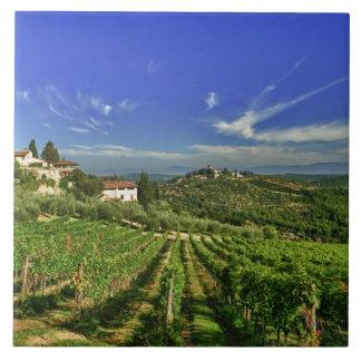 Italia, Toscana, Huelga. Los viñedos de Castello Azulejo Cuadrado Grande