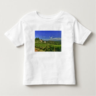 Italia, Toscana, Huelga. Los viñedos de Castello Camisas