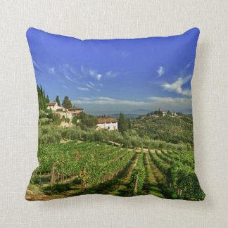 Italia, Toscana, Huelga. Los viñedos de Castello Cojines