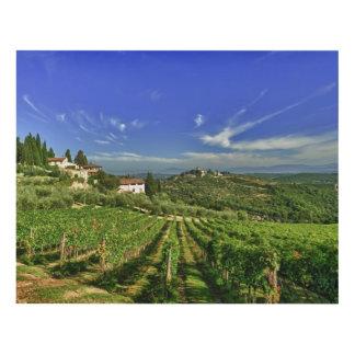 Italia, Toscana, Huelga. Los viñedos de Castello Cuadro