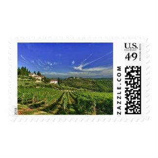 Italia, Toscana, Huelga. Los viñedos de Castello Estampillas