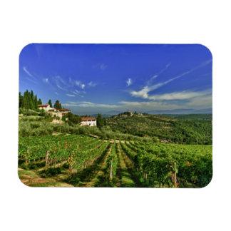 Italia, Toscana, Huelga. Los viñedos de Castello Imán Rectangular