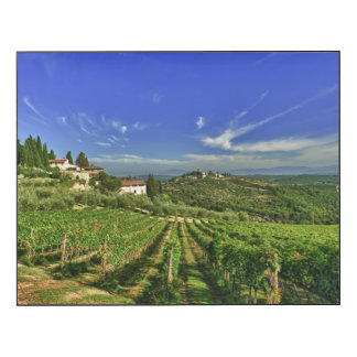 Italia, Toscana, Huelga. Los viñedos de Castello Impresión En Madera