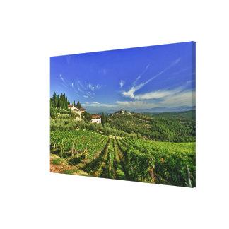 Italia, Toscana, Huelga. Los viñedos de Castello Lienzo Envuelto Para Galerias
