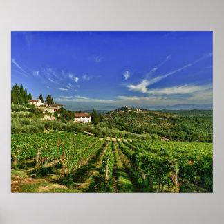 Italia, Toscana, Huelga. Los viñedos de Castello Posters