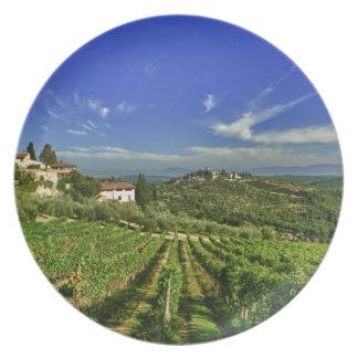 Italia, Toscana, Huelga. Los viñedos de Castello Plato Para Fiesta