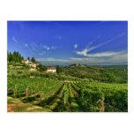 Italia, Toscana, Huelga. Los viñedos de Castello Postales