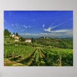 Italia, Toscana, Huelga. Los viñedos de Castello Póster