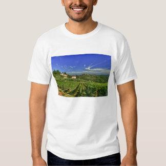 Italia, Toscana, Huelga. Los viñedos de Castello Remera