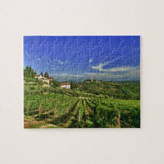 Italia, Toscana, Huelga. Los viñedos de Castello Rompecabezas Con Fotos