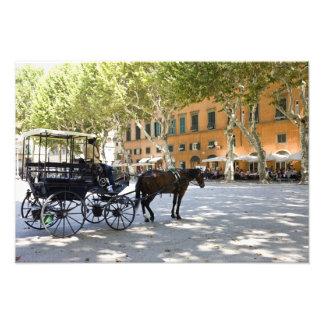Italia, Toscana, Lucca, birlocho en la plaza Fotografías