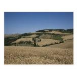 Italia. Toscana. Montichiello Postales