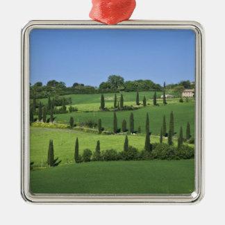 Italia Toscana Multepulciano Árboles de Cypress Ornamento De Navidad