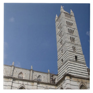 Italia, Toscana, Siena. El Duomo. Teja