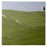 Italia, Toscana, Val D'Orcia, paisaje 3 Azulejos Cerámicos