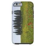 Italia, Toscana, Val D'Orcia, paisaje Funda Resistente iPhone 6