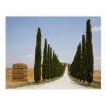 Italia. Toscana. Val D'Orcia (valle de Orcia) 3 Tarjetas Postales