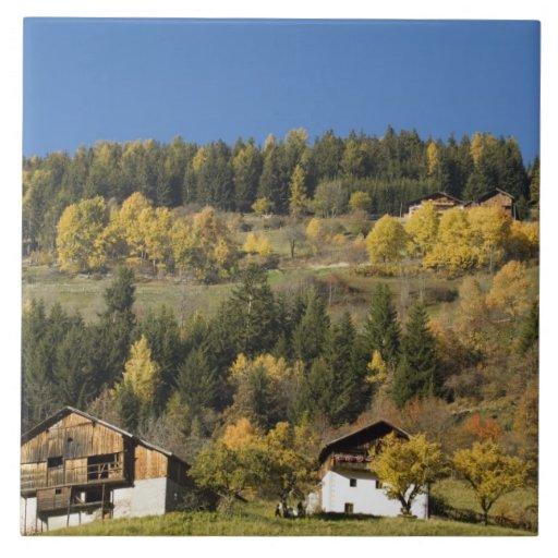 Italia, Trentino - alto provincia del Adigio, Bolz Azulejo Cuadrado Grande