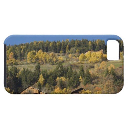 Italia, Trentino - alto provincia del Adigio, Bolz iPhone 5 Case-Mate Protector