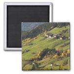 Italia, Trentino - alto provincia del Adigio, Bolz Imanes De Nevera