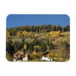 Italia, Trentino - alto provincia del Adigio, Bolz Iman Flexible