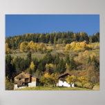 Italia, Trentino - alto provincia del Adigio, Bolz Poster