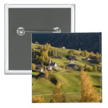 Italia, Trentino - alto provincia del Adigio, Bolz Pins